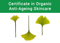 Certification in Organic Anti-Ageing Skincare